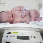 Tartıda bebek fotoğrafı